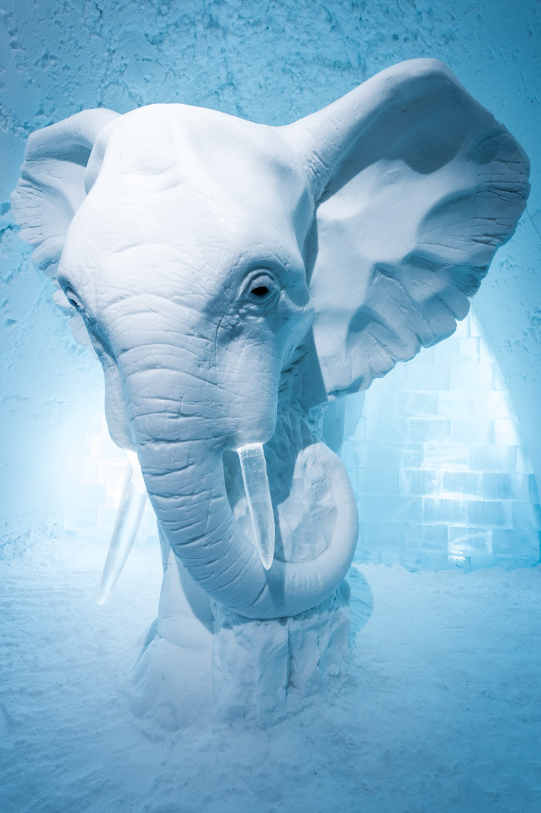 Press release December 2015, ICEHOTEL,  Elephant in the Room design by  AnnaSofia Mååg (Sweden)