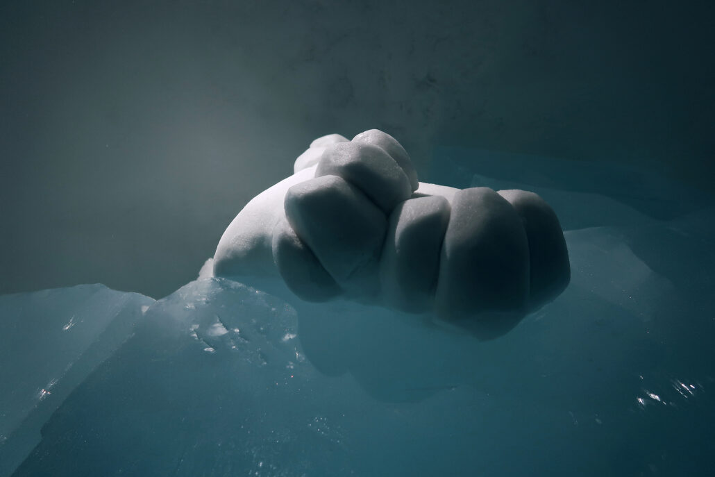 ICEHOTEL #30 / 2019 / CLEAR WATER / Paws
